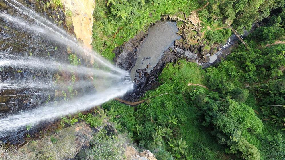 Springbrook Purling Brook Falls